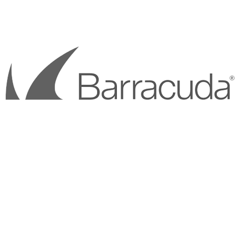 barracuda copy